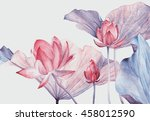 set of watercolor botanical... | Shutterstock . vector #458012590