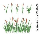 watercolor reeds set. design... | Shutterstock .eps vector #458037058