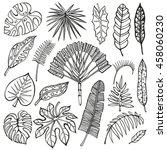 tropical palm leaves set.black... | Shutterstock . vector #458060230