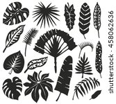 tropical palm leaves set.leaf... | Shutterstock . vector #458062636