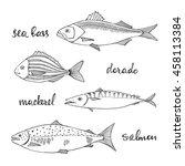 fish set  sea bass  dorado ... | Shutterstock .eps vector #458113384