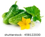 fresh green cucumber with leaf... | Shutterstock . vector #458122030