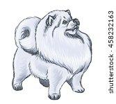illustration of a fluffy white... | Shutterstock . vector #458232163