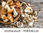 Fresh Boletus Mushrooms In A...
