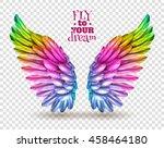 pair of colorful bird wings set