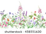 panoramic view of wild meadow... | Shutterstock . vector #458551630