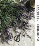 cut lavender with scissors | Shutterstock . vector #458587339