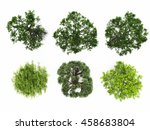 tree top view isolated white... | Shutterstock . vector #458683804