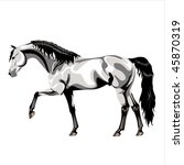 walking gray arabian stallion... | Shutterstock . vector #45870319