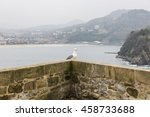 Seagull On Wall With Landscape...