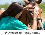 veterinary horses on the farm... | Shutterstock . vector #458775883