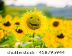 Sunflowers Smiling On A Field...