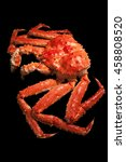 red king crab isolated on black ... | Shutterstock . vector #458808520