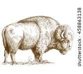 vector antique engraving... | Shutterstock .eps vector #458863138