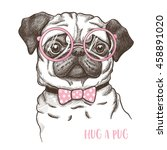 Stock vector vector illustration of a hand drawn funny fashionable pug 458891020