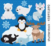 arctic animal vector... | Shutterstock .eps vector #458951890