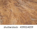 stone texture   background | Shutterstock . vector #459014059