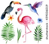 watercolor tropical birds and... | Shutterstock . vector #459036019