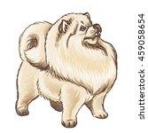 vector illustration of a fluffy ...   Shutterstock .eps vector #459058654