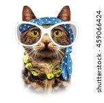 Cat Print Cat Illustration T...