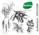 italian cuisine herbs and... | Shutterstock .eps vector #459112489