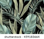 tropical colorful background...   Shutterstock . vector #459183664