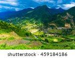 rice fields on terraced in... | Shutterstock . vector #459184186