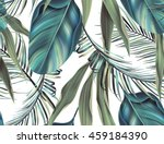 tropical colorful background... | Shutterstock . vector #459184390
