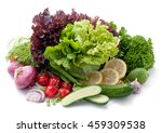 different mix of fresh... | Shutterstock . vector #459309538