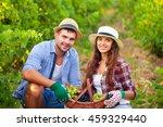 portrait young beautiful couple ...   Shutterstock . vector #459329440