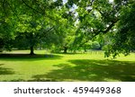 sunny meadow with green grass... | Shutterstock . vector #459449368