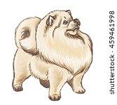 illustration of a fluffy light...   Shutterstock . vector #459461998