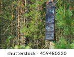 Small photo of Portable solar panels are hanging on a tree and accumulate energy