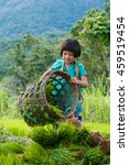 Children Of Hill Tribes Of...
