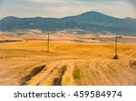 panorama of the tuscan cypress... | Shutterstock . vector #459584974