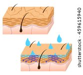 skin hydration and dry skin... | Shutterstock .eps vector #459615940