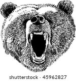 bear etching | Shutterstock .eps vector #45962827