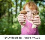 Fresh Mushrooms In The Kid...