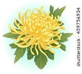 Yellow Chrysanthemum Flower...