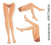 female legs set. woman legs set.... | Shutterstock .eps vector #459774814