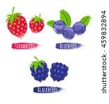 assorted berries set vector... | Shutterstock .eps vector #459832894