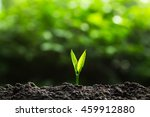 plant a trees | Shutterstock . vector #459912880