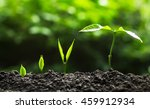 plant a trees | Shutterstock . vector #459912934
