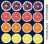 collection of citrus slices  ... | Shutterstock .eps vector #459933088