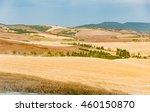 Montalcino Tuscany   July 23 ...