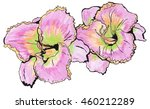 day lily purple petals with...   Shutterstock . vector #460212289