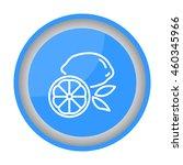 web line icon. lemon | Shutterstock .eps vector #460345966