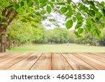 empty wooden table with garden... | Shutterstock . vector #460418530