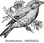 bird | Shutterstock .eps vector #46050652