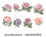 watercolor set with different... | Shutterstock . vector #460646983